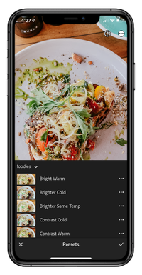 Food Presets Preview